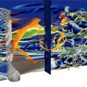 Extreme Flow Simulations Reveal Skeletal Adaptations Of Deep Sea Sponges 777x441 1 2