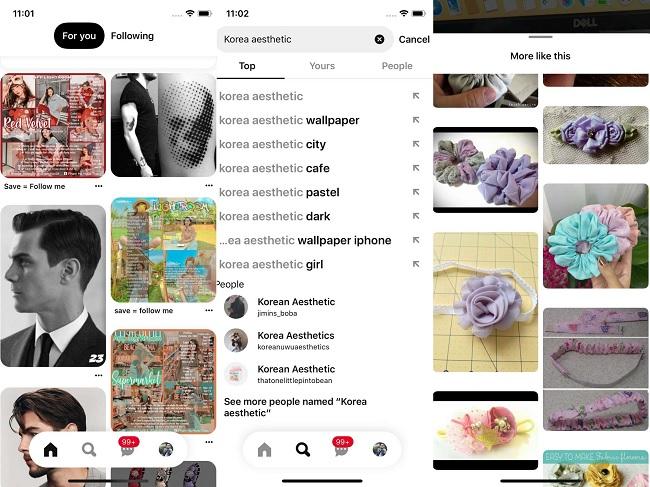 Pinterest cho các bạn mọi thứ bạn cần trong mọi lĩnh vực và chủ đề
