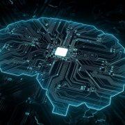 Ai Brain Circuit Connectivity 777x518 1 2