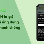 Ung Dung Vieon La Gi 1 1