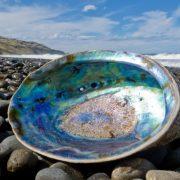 Shiny Nacre Abalone Paua Shell 777x518 1 2
